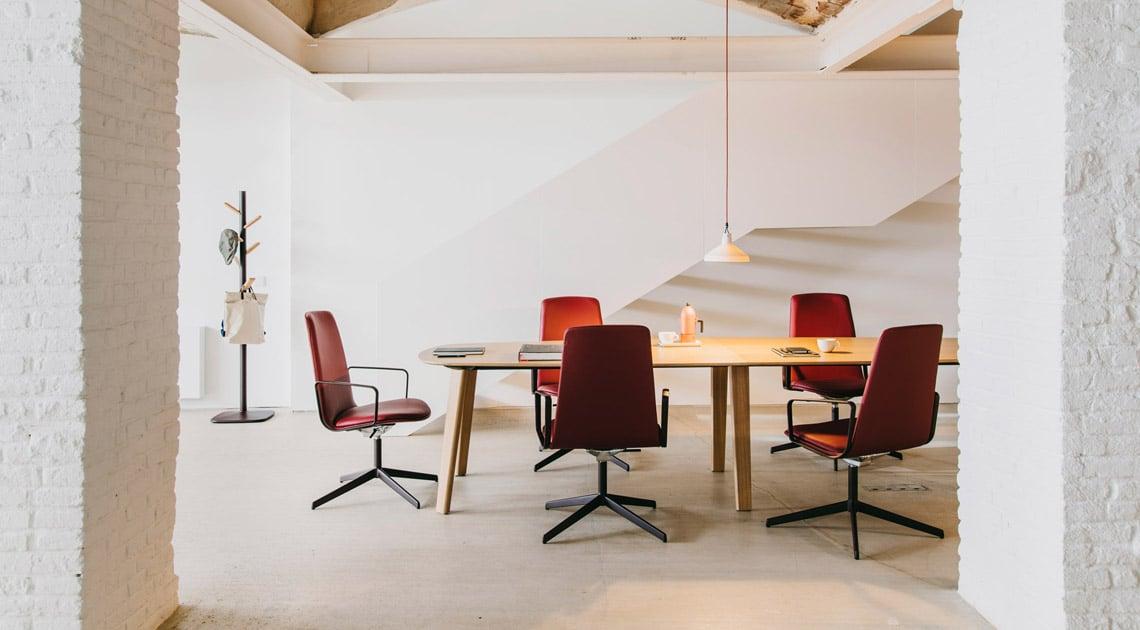 Lottus Conference — Enea Design