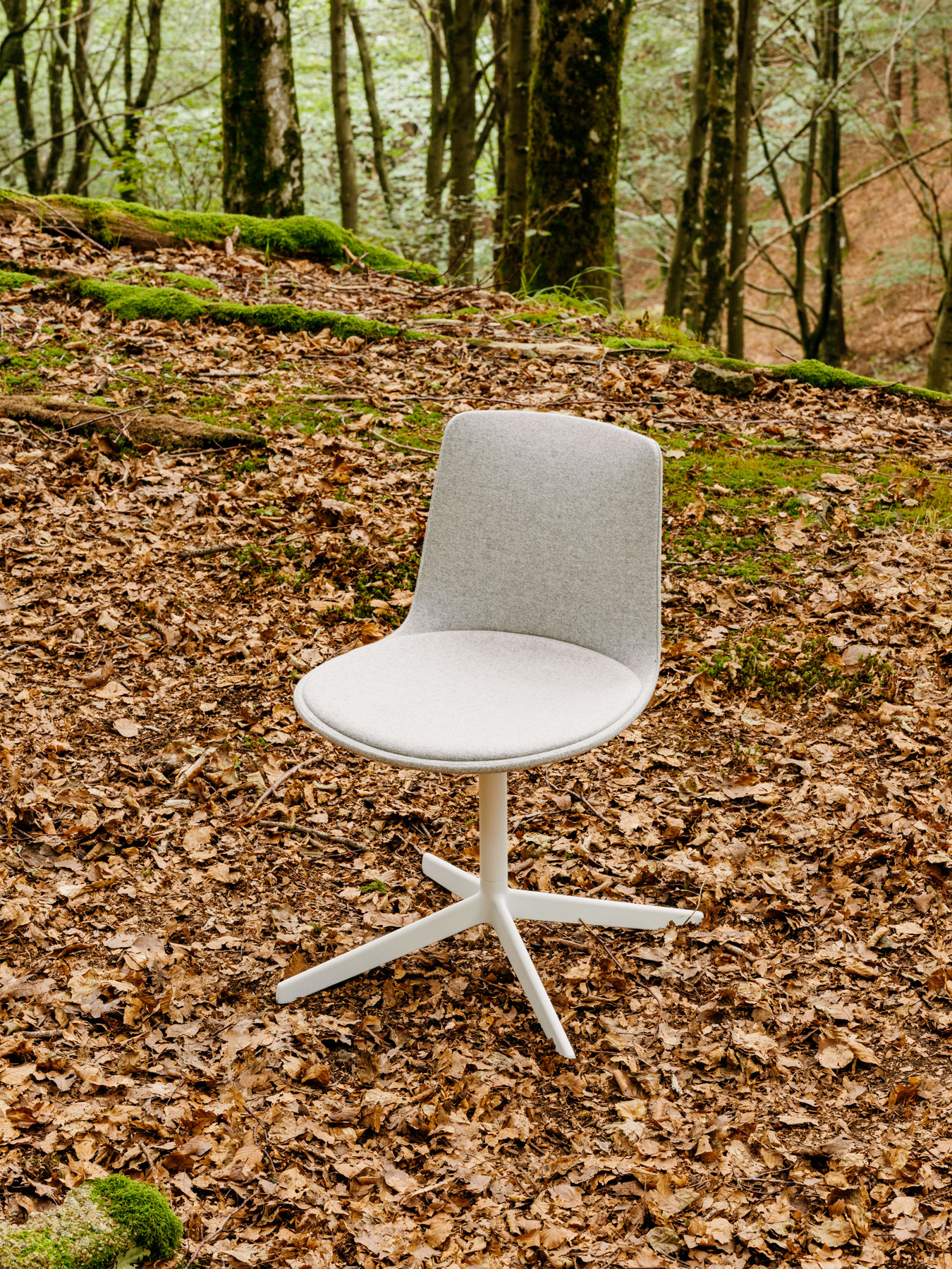 Lottus confident chair