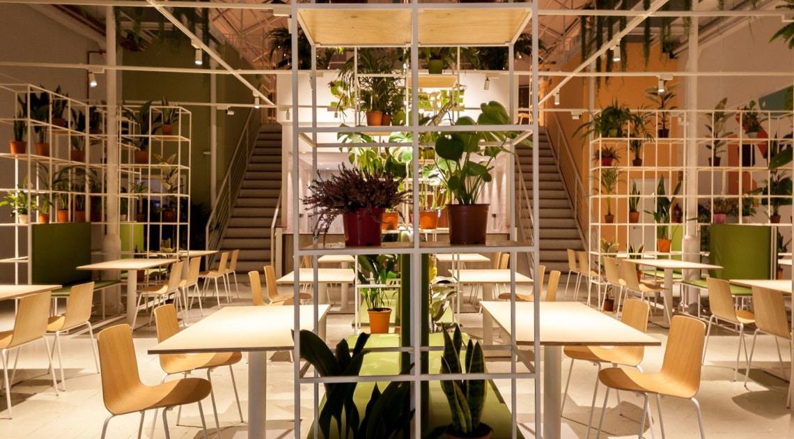 Restaurante Salvaje — Enea Design