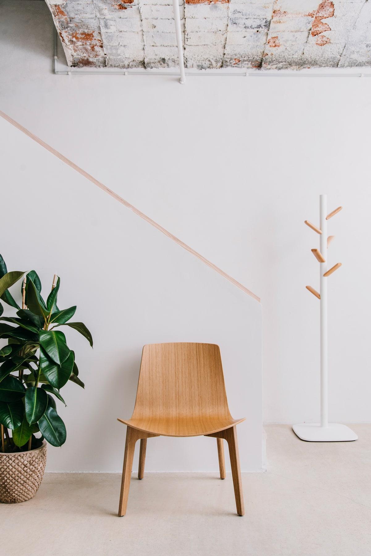 Lottus Wood — Enea Design
