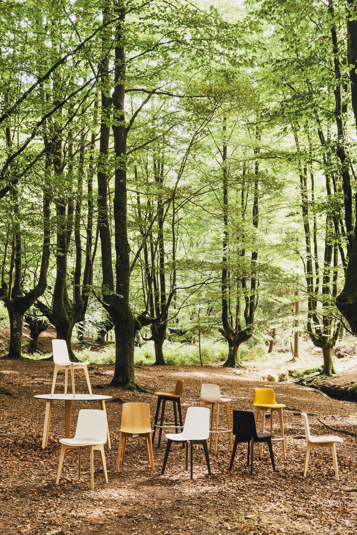Lottus Wood colección
