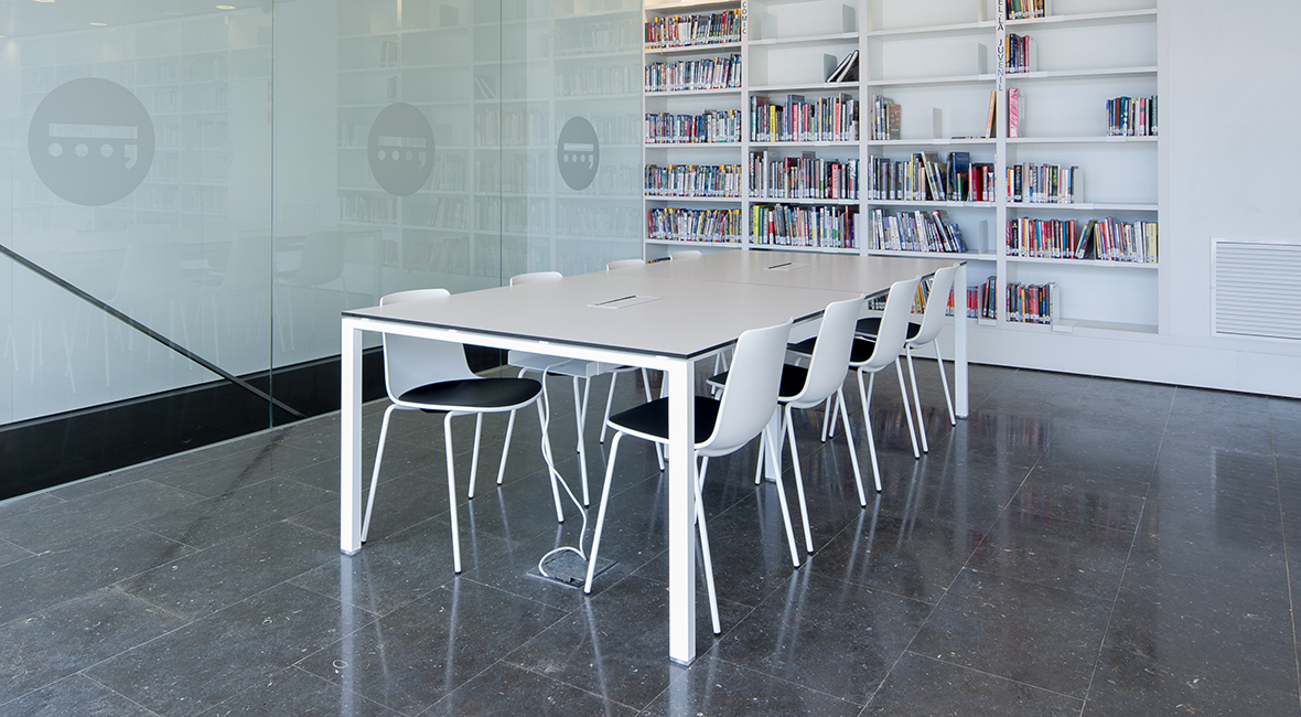 Pere  Anguera  liburutegia — Enea Design